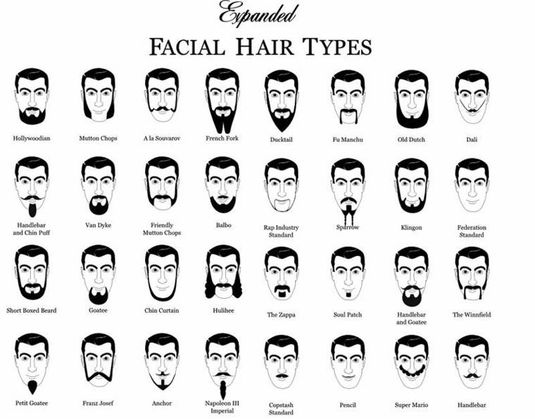 Different Styles Of Facial Hair What Type Of Facial Hair  If Any  Do You Have  Theshaveden