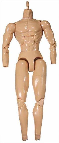 1/6 Base Bodies Guide: Males & Females (UPDATED 4/3/14)! B1e16360e05e0a484861314407009eaf0f8ea666_r