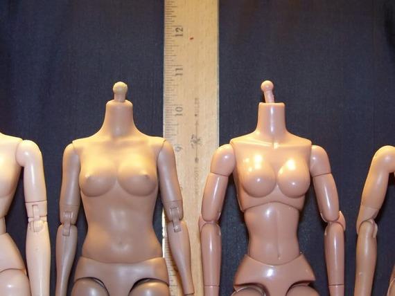1/6 Base Bodies Guide: Males & Females (UPDATED 4/3/14)! Dfa360b36319e991554f099d40ed40cc75b793c5_r